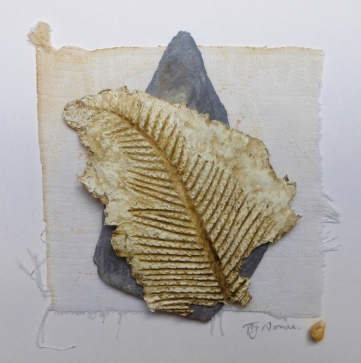 Fossil Series (No 6)